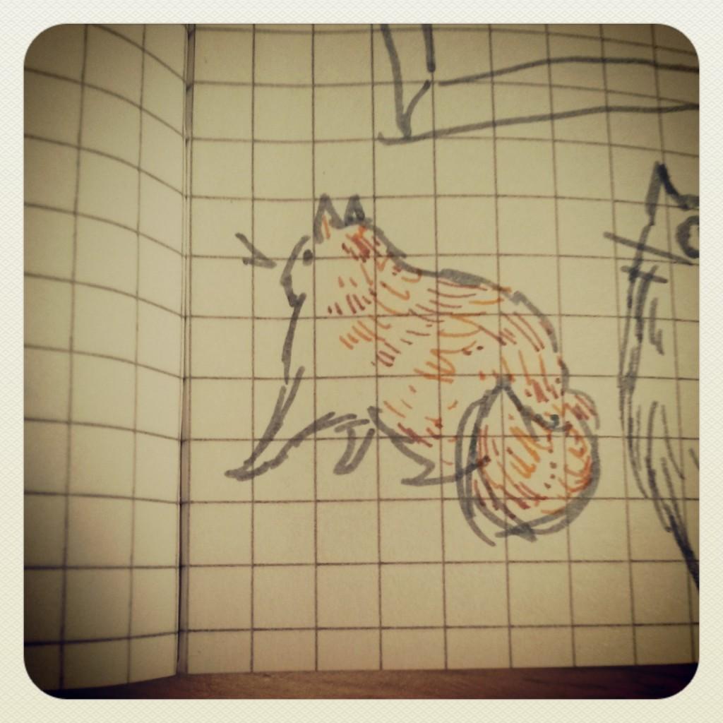 Tubby Ginger Cat - Instagram Flashback